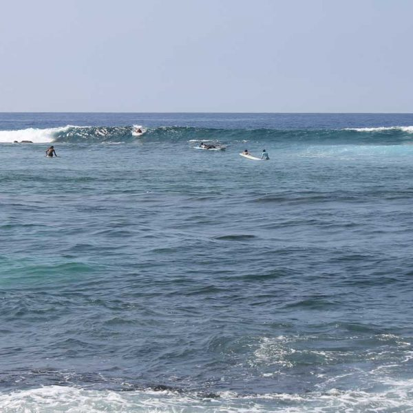 Kona Surfing at Kahaluu Beach, Kona Surfer's Rock